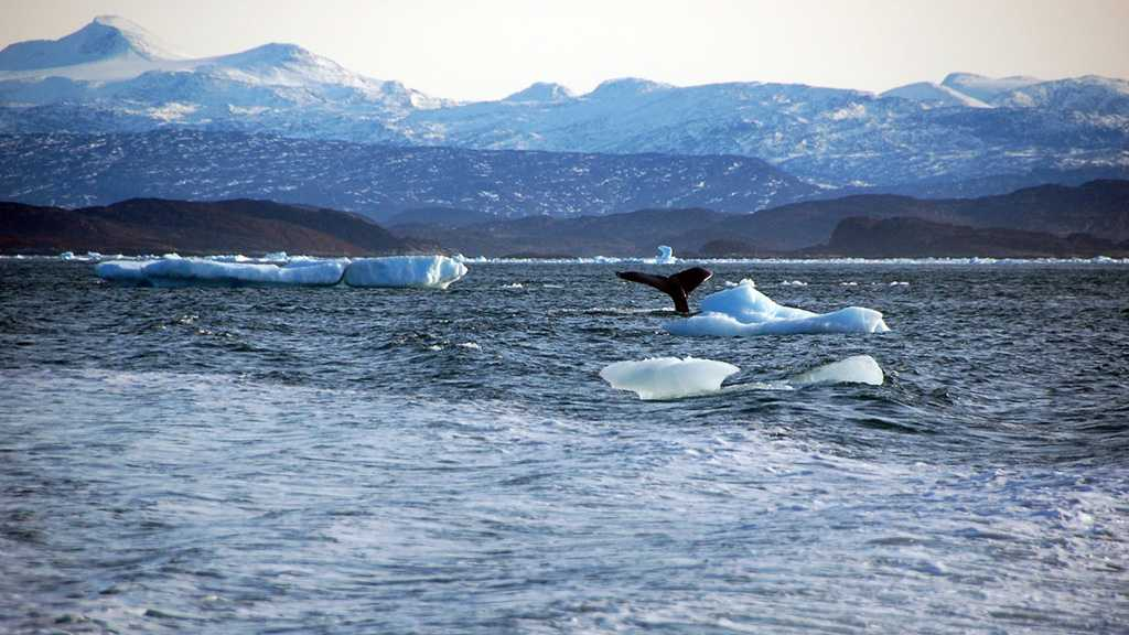 China Hits Back at US Allegations of 'Predatory Interests' in Arctic