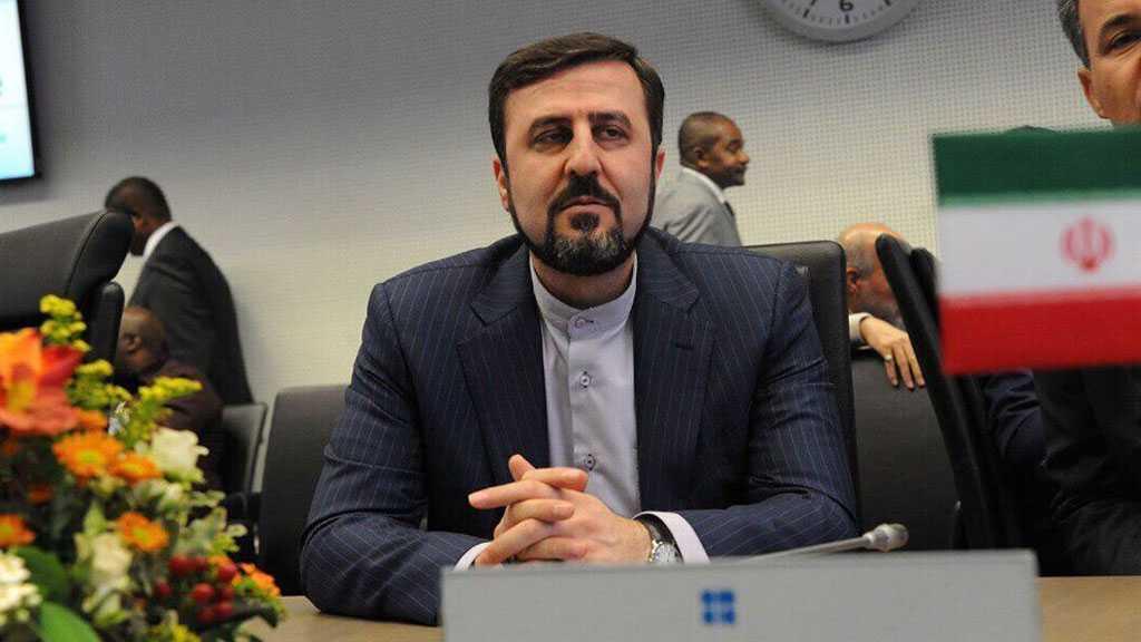 Iran's Envoy Deplores IAEA's Resolution, Vows 'Appropriate' Response
