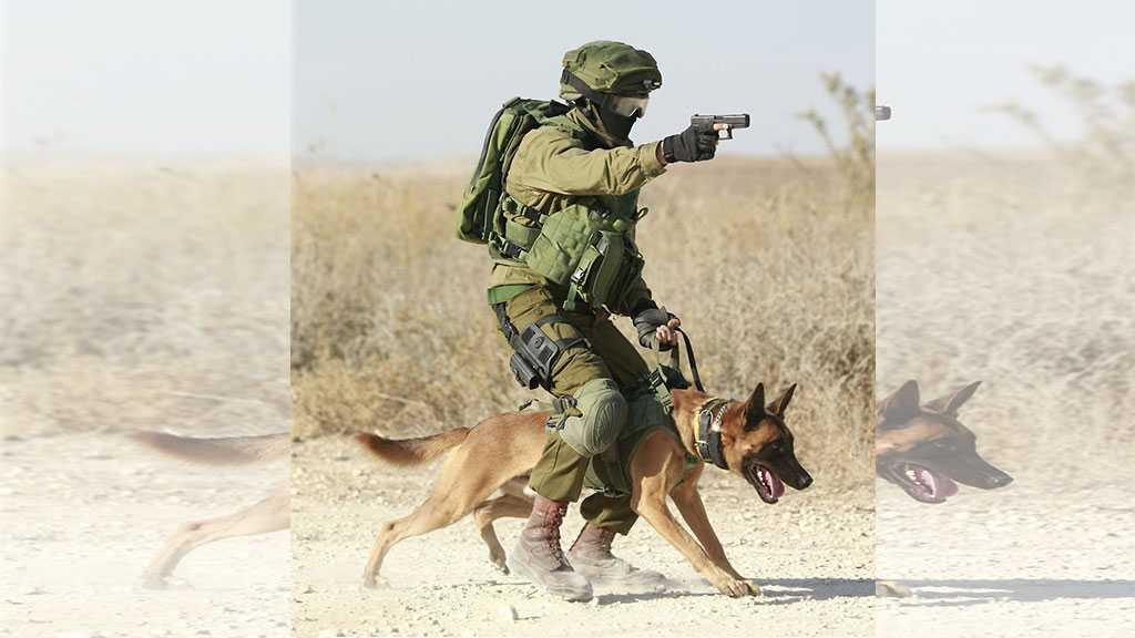 'Israeli' Military Conducted Secret Weapons Tests on Animals