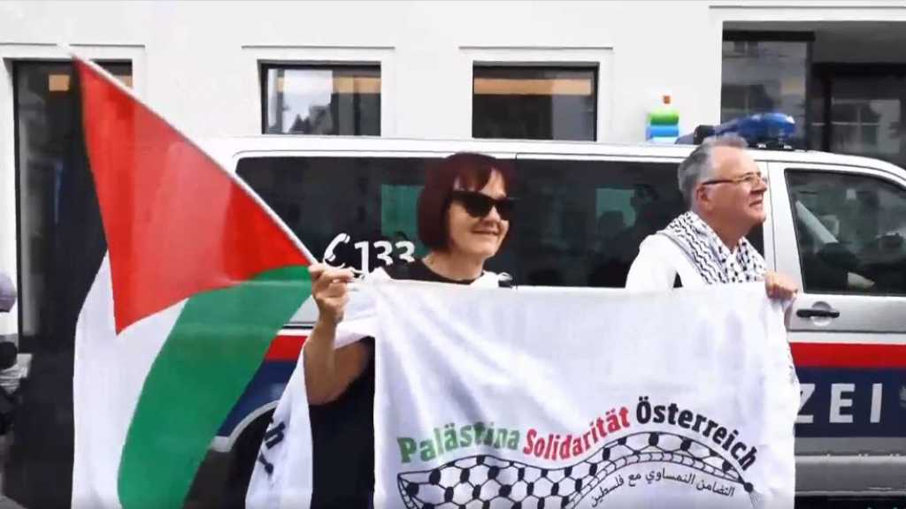 """Protesters in Vienna Condemn """"Israel"""" Annexation Plan"""