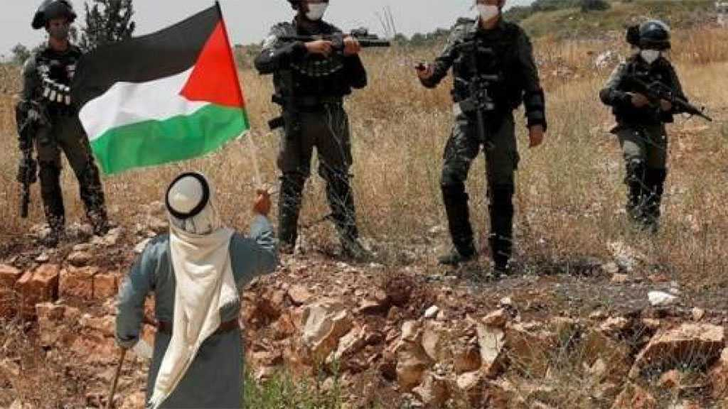 OIC Urges UNSC to Stop 'Israel' Annexation Plan