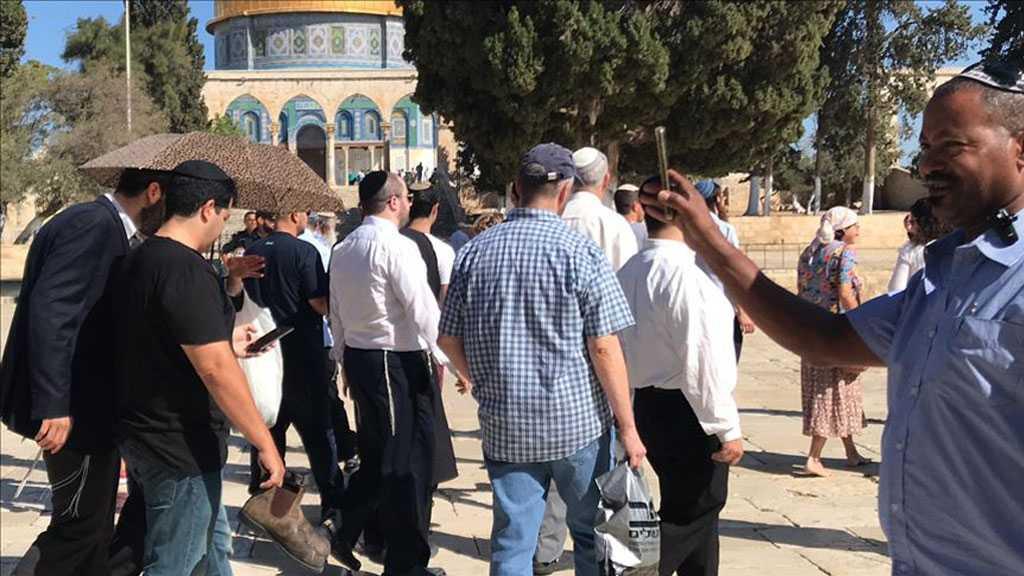 Over 900 'Israeli' Settlers Storm Holy Al-Aqsa Complex