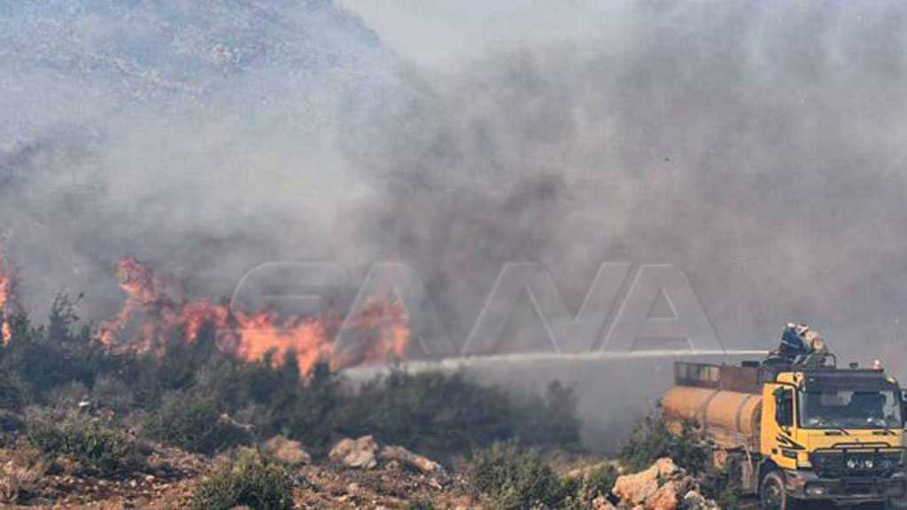 Syria Wildfires Consume Large Areas, Firefighting Efforts Underway
