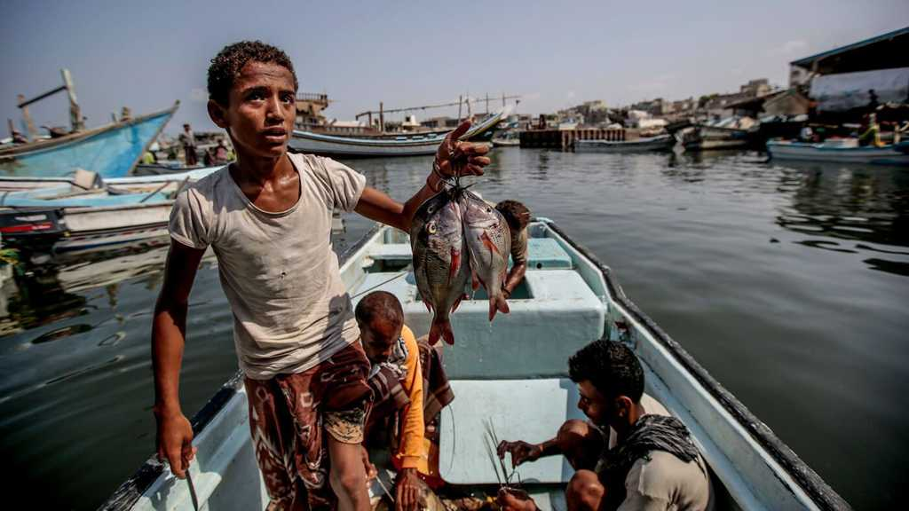 US-Saudi Aggression Causes Yemen's Fish Sector $9bln Losses
