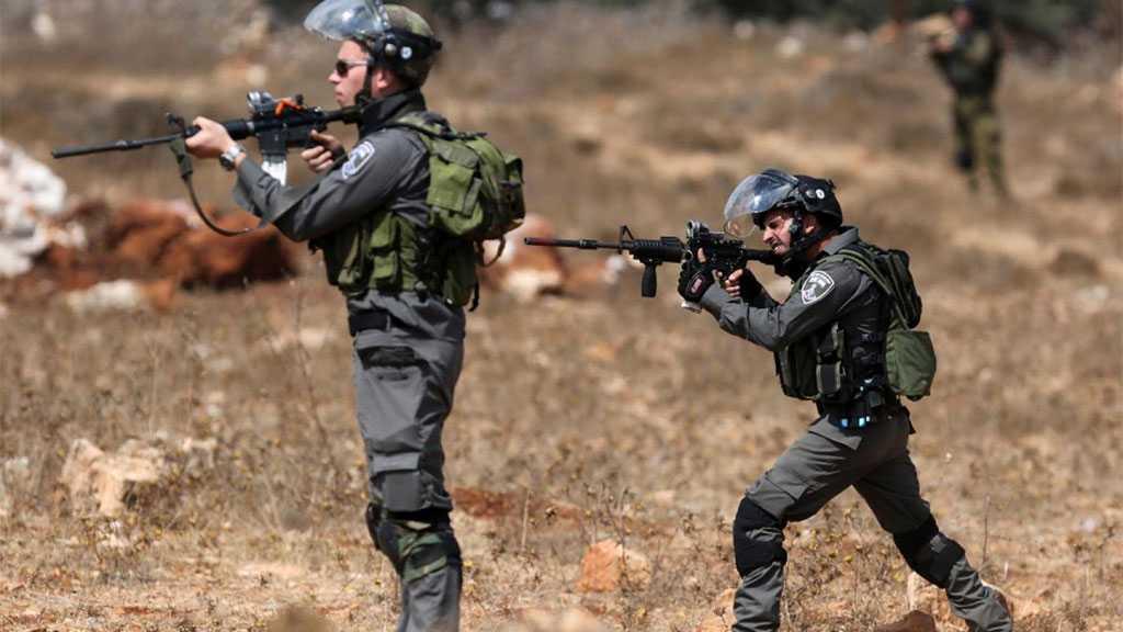 'Israeli' Soldiers Shoot Two Palestinian Teens in Tulkarm
