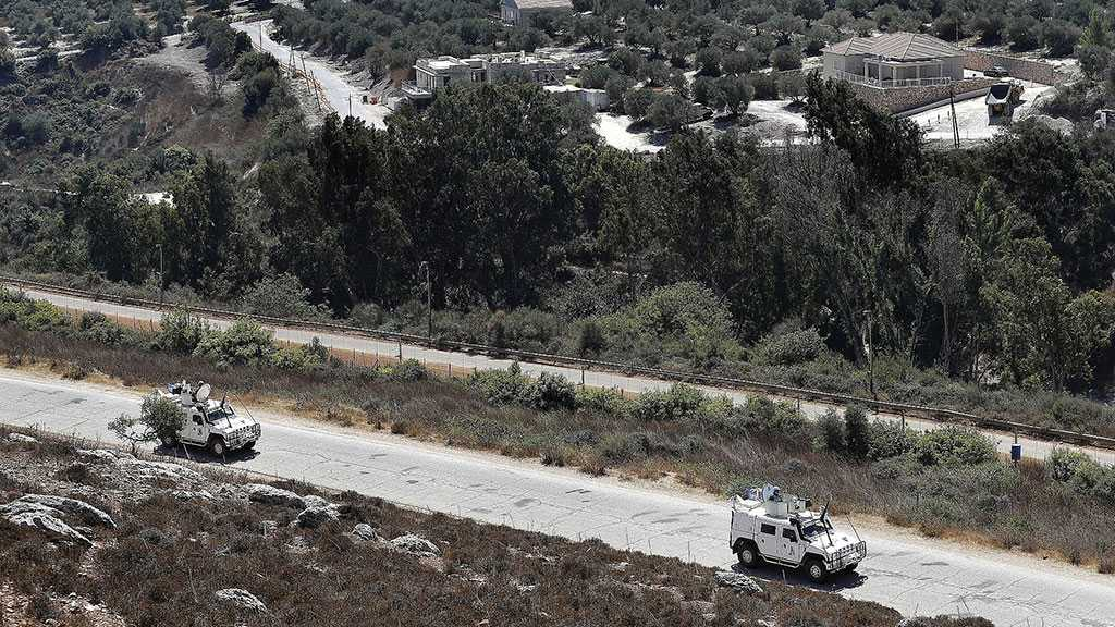 IOF Seize 7 Cows That Crossed from Lebanon to Occupied Palestine