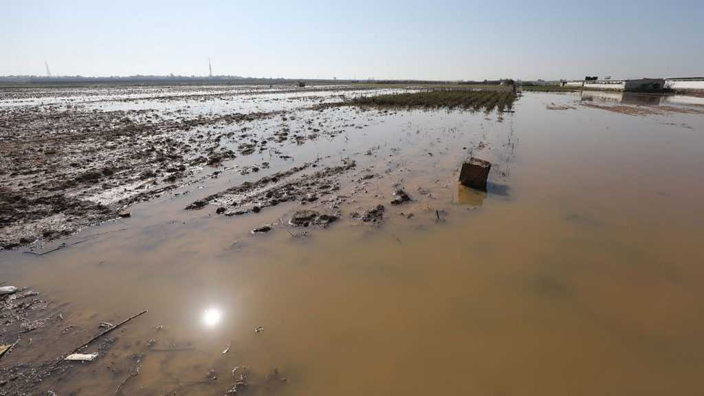 """Mother of Terrorism: """"Israel"""" Floods Palestinian Farmlands in Gaza with Rainwater"""