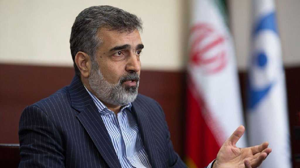 Iran Won't Hand Over Data to IAEA Until Sanctions Lifted - AEOI