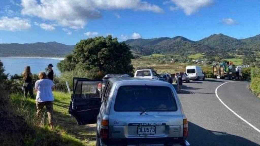 Residents of New Zealand's North Island Allowed to Return Home after Tsunami Alert