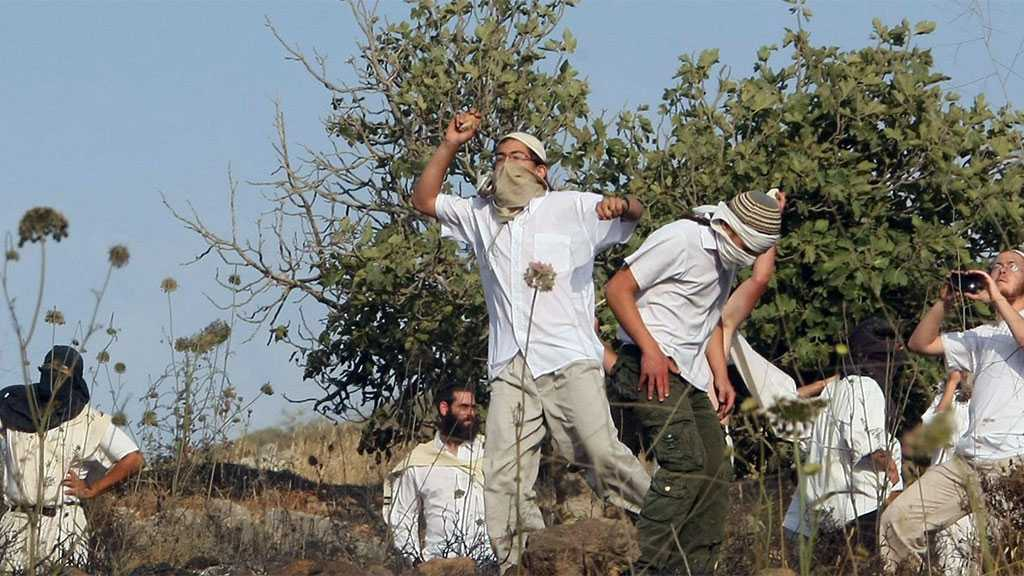 """Israeli"" Settlers Forming Terrorist Cells to Attack Palestinians"