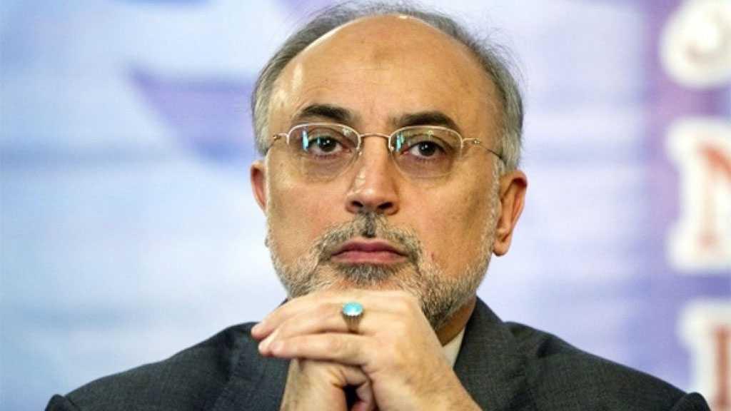 Iran's Salehi: Int'l Community, IAEA must Address Nuclear Terrorism against Iran