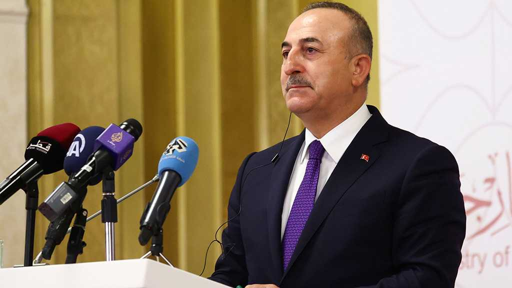 """Turkey's FM Cavusoglu Hails """"New Period"""" in Ties with Egypt"""
