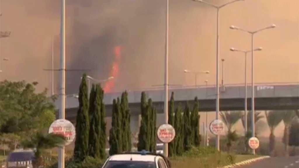Fire Breaks out in Field Near Ben Gurion Airport