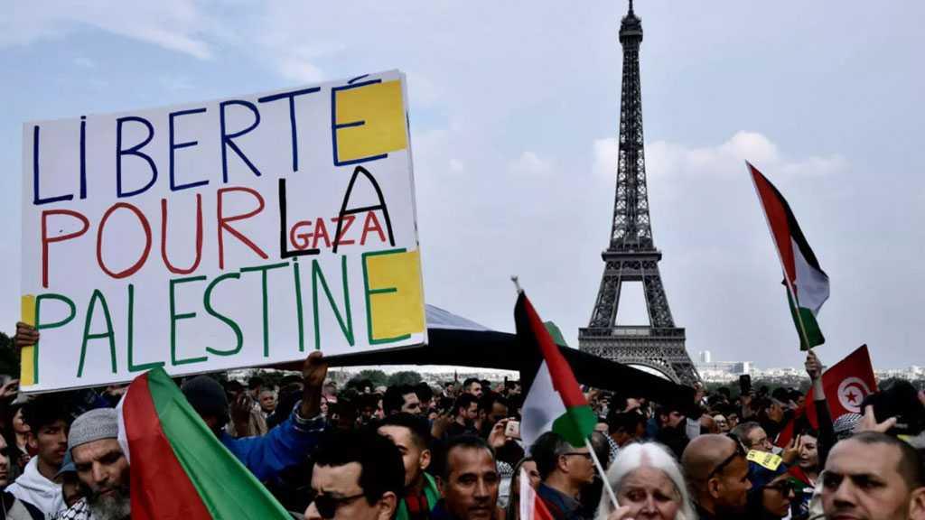 Organizers of Pro-Palestine Demos Remain Defiant Despite French Court's Ban