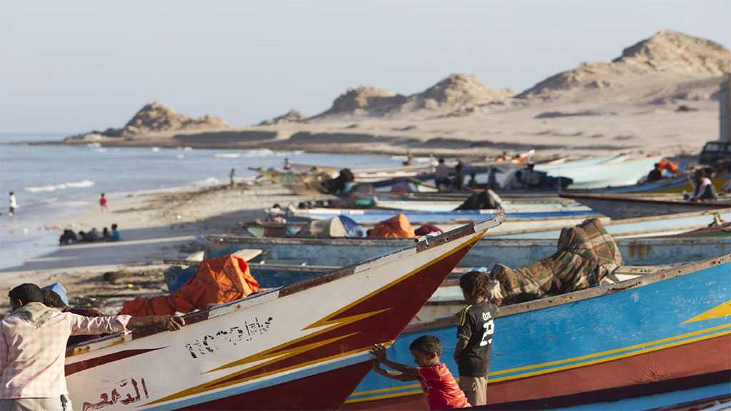 Daylight Robbery: UAE Issues Emirati ID Cards for Residents of Yemen's Socotra