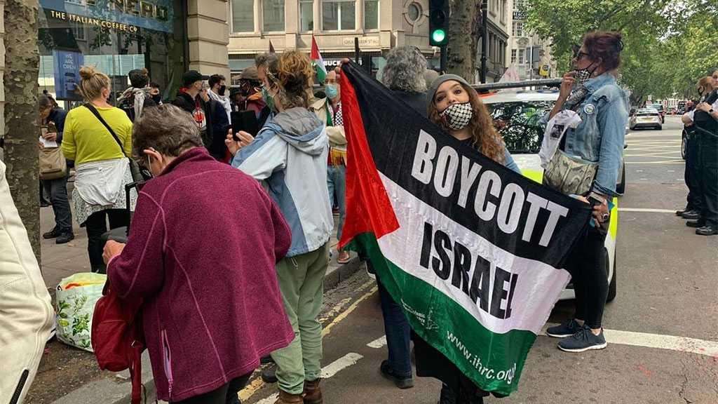 160 Academics Urge EU to Stop Funding 'Israeli' Universities Complicit In Human Rights Violations