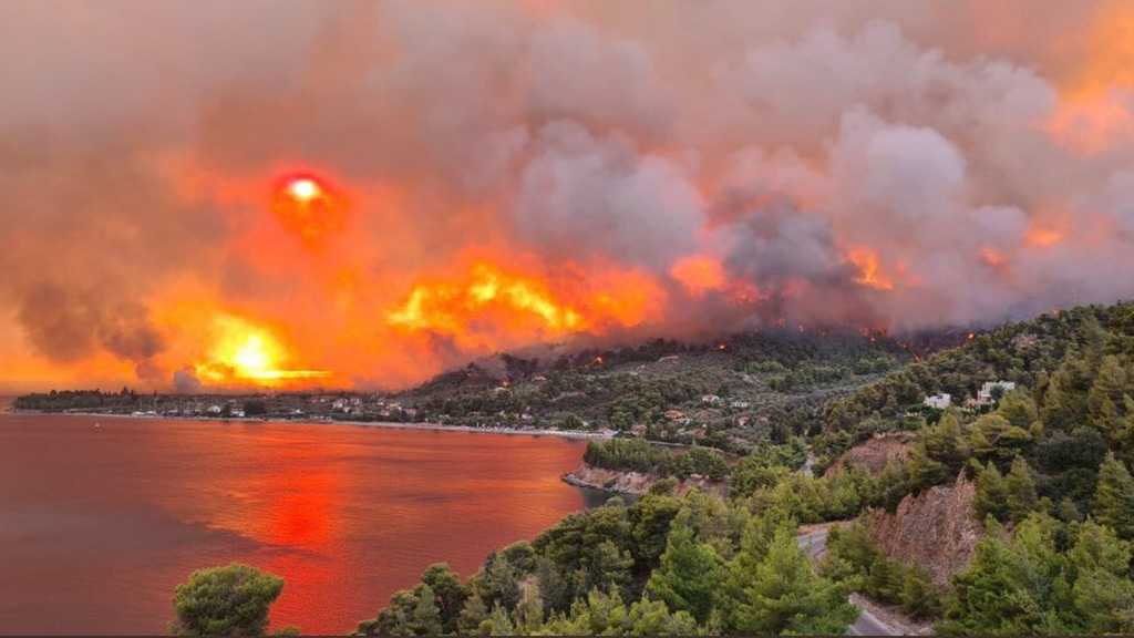 Wildfires Hit Ancient Olympia in Greece and Thermal Plant in Turkey