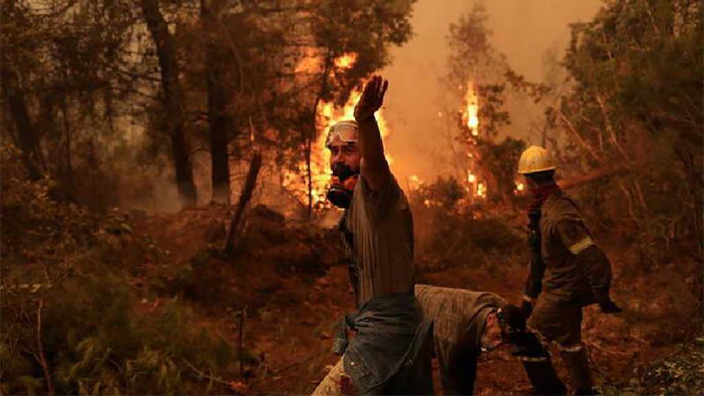 Wildfires: At Least 65 Killed In Algeria, Greece and Italy Burn