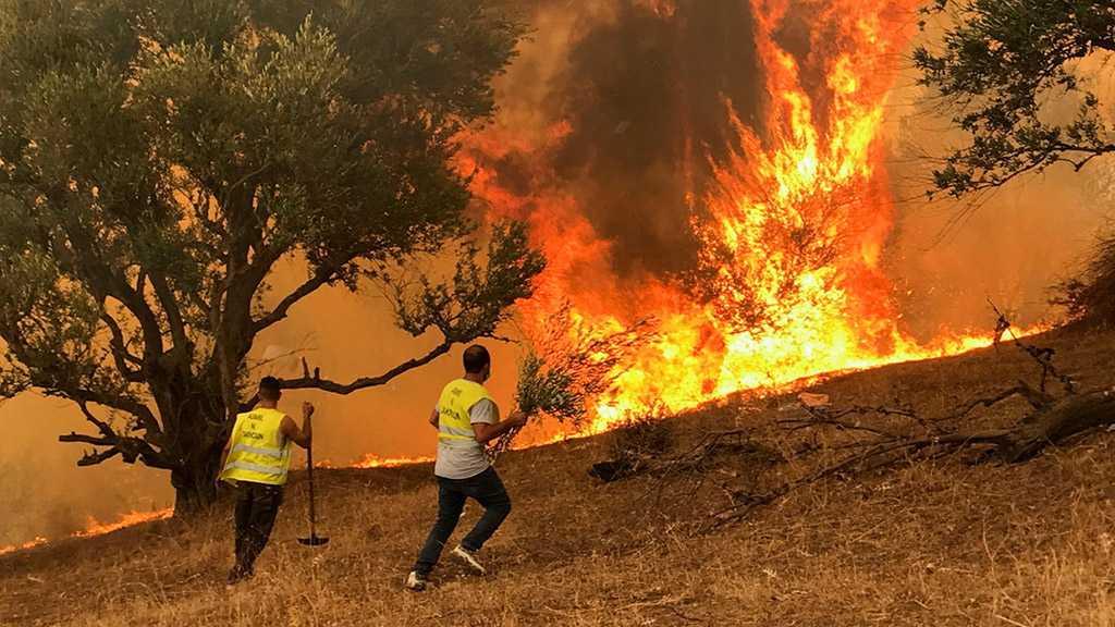 Algeria Arrests 22 Suspected Arsonists over Deadly Blazes