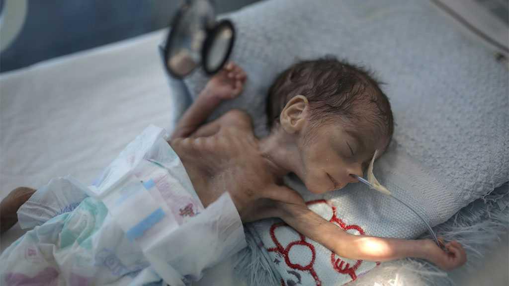 Millions in Yemen on Brink of Famine, UN Warns