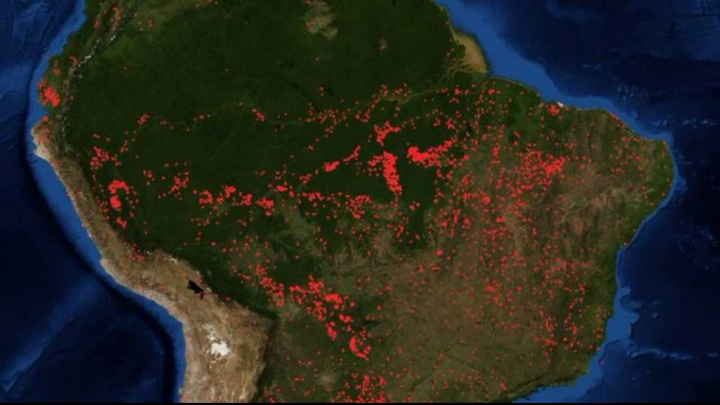 Brazil's President Accused of Crimes against Humanity for Destroying Amazon